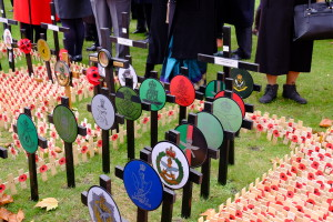 Field of Remembrance 2016