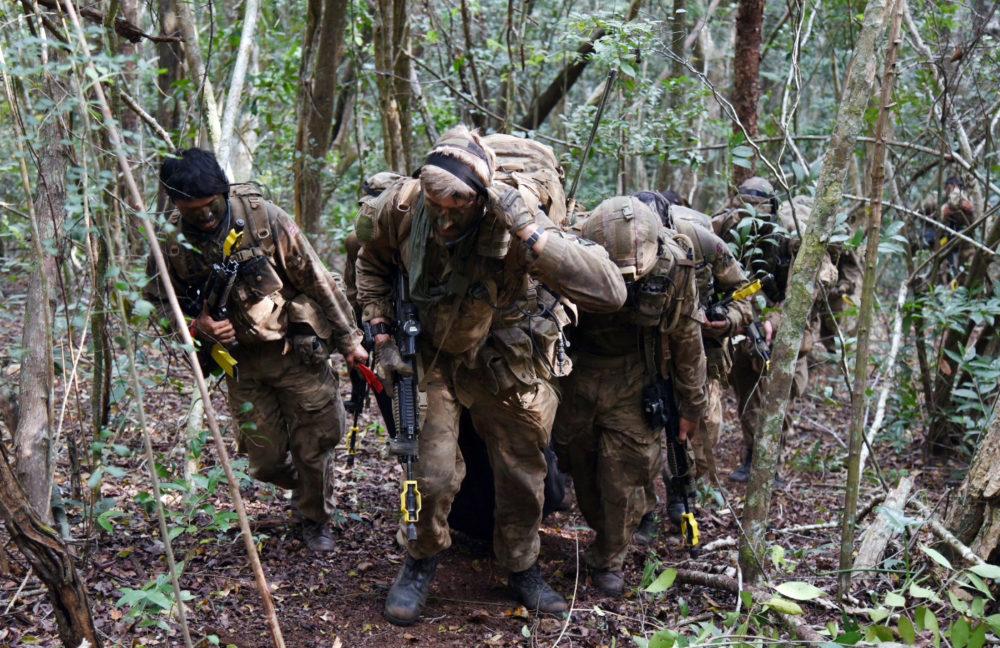 3RGR jungle Borneo